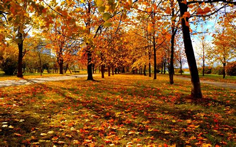 Fall Backgrounds by Pretty Fall Background 6806267