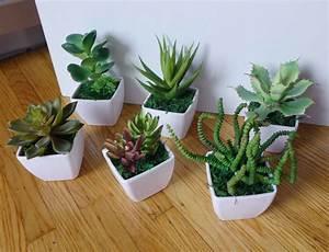 Small, Potted, Artificial, Mini, Plants, Home, Wedding, Decor