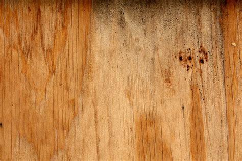 woodgrain texture stock photo freeimagescom