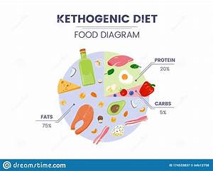 Vector Ketogenic Diet Food Diagram With Proteins  Carbs