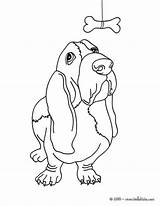 Hound Basset Dog Coloring Perros Dibujos Puppy Bassett Para Colorear Perro Drawing Hellokids Imprimir Puppies Animados Dachshund Hush Awesome Think sketch template