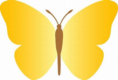 Butterfly Yellow Simple Clip Plain Sweetclipart