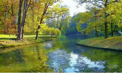 Nature Pond Trees Autumn Parks Desktop Wallpapers