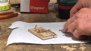 Comment Attraper Une Souris : comment attraper une souris vivante ~ Dailycaller-alerts.com Idées de Décoration