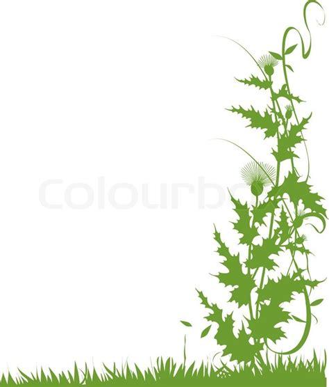 Blumenranke Grün Horizontal by Kletterpfanze Clipart Clipground