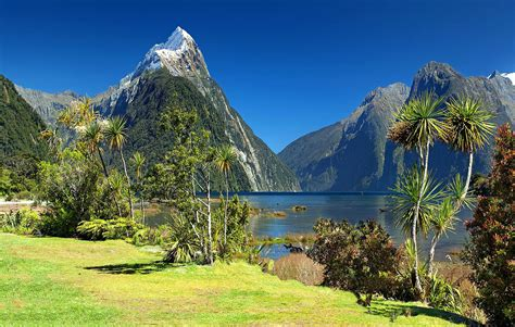 Beautiful New Zealand Image