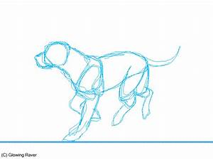 Dog run cycle animation SCRAP by casualGEE on DeviantArt