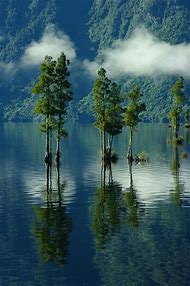 Lake Brunner New Zealand