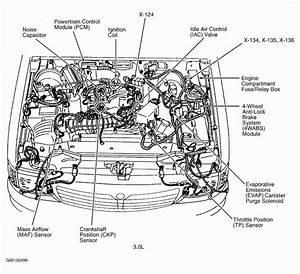 Tdi Engine Bay Diagram In 2020
