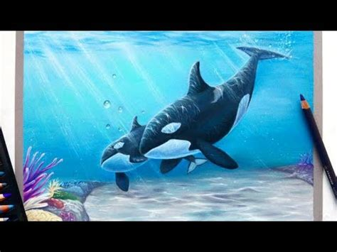 time lapse drawing mother  baby orcakillerwhale