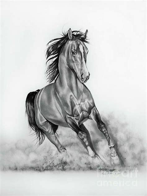 pin  khald alaabady khaled alabbade  fn art horse