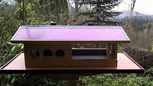 Haus Bauen Was Beachten : haus selber bauen selber bauen haus selber bauen ~ Lizthompson.info Haus und Dekorationen