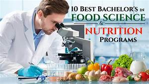 10 Best Bachelor U0026 39 S In Food Science And Nutrition Programs