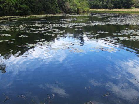 10 best places to visit near kodaikanal hello travel buzz