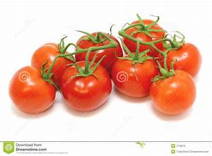 Tomatoes On The Vine Stock Photo - Image: 7718210