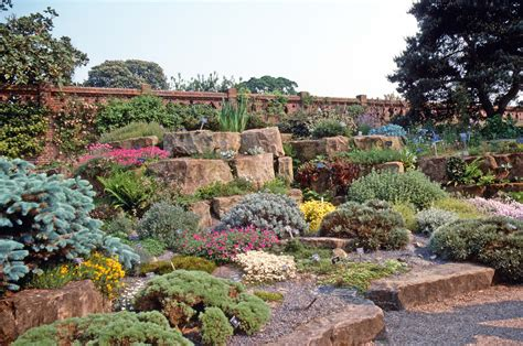 Rock Garden : Black Gold Create A Rock Garden For Cacti & Succulents