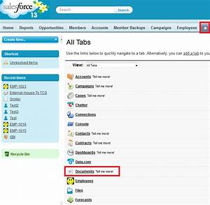 infallible techie how to create custom tab style in With documents in salesforce