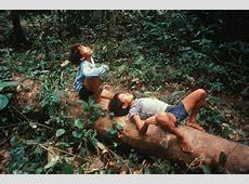 Peuples autochtones et changement climatique Survival