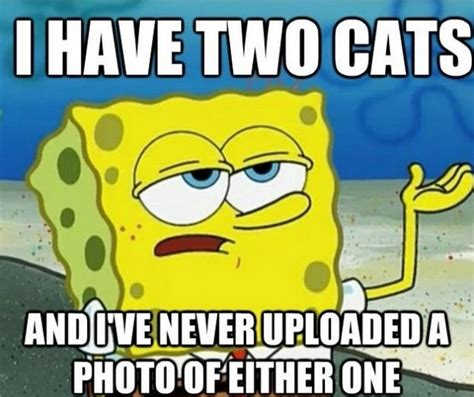 Funny Spongebob Memes - funny spongebob memes 08