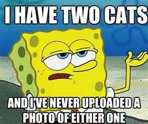 funny Spongebob memes 08