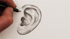 How to Draw Ears: Step by Step - YouTube