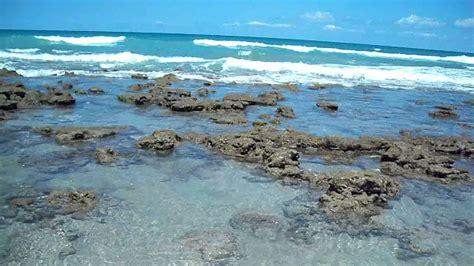 ☮bathtub Reef Beach ☮ Youtube
