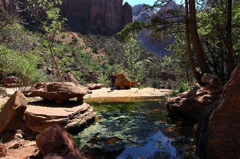 zion np middle emerald pool   picture