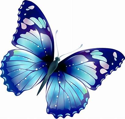Butterfly Clipart Clipground