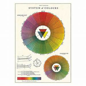Vintage Colour Chart Poster  Wrap  Buy Online Today