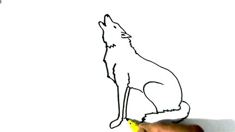draw wolf howling  easy steps  children