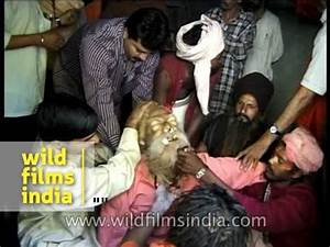 People remove ornaments and tear clothes off Sadhu's body ...