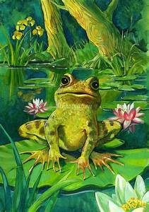 HERMIT THE FROG'S COUSIN, ON LILLY PAD ! | SWEET THINGS ...