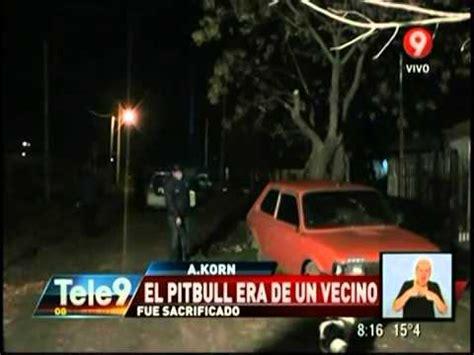 Un Pitbull Atacó Y Mató A Una Beba Doovi