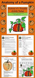 Halloween Activities  Anatomy Of A Pumpkin Activity Packet