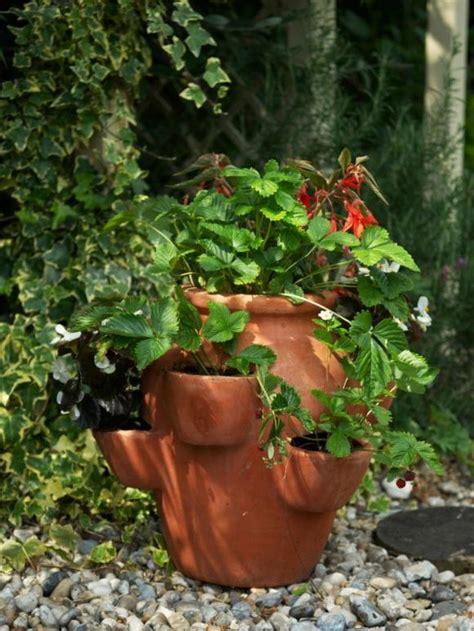 pot de fleur deco pot de fleur terre cuite parfait pour la d 233 co de jardin