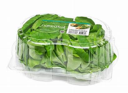 Mucci Butter Lettuce Clamshell Packaging Living Leaf
