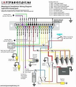Eurovox Wiring Diagram