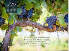 May 2013 John 155 NIV Desktop Calendar Free May Wallpaper