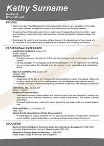 L&R Resume Examples 2