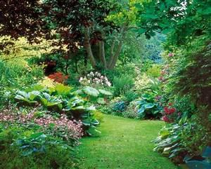 Plantes Vivaces Autour D Un Bassin : sol gorg d 39 eau quelle v g tation choisir ~ Melissatoandfro.com Idées de Décoration