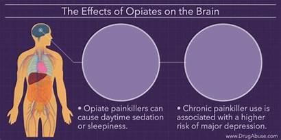 Effects Opiates Opiate Side Painkillers Stimulant Brain