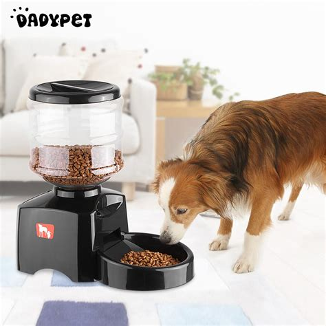 automatic pet feeder reviews beishuo 5 5l lcd automatic pet feeder for cat electric