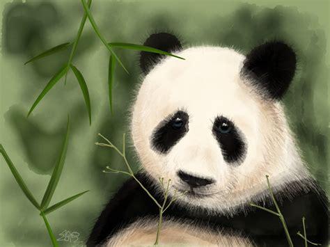 de cuisine quigg sad panda 2 3 chrome seotoolnet com