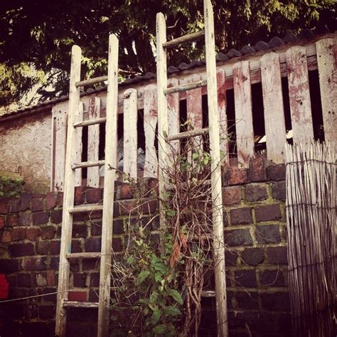 trellis  recycled materials ideaslive