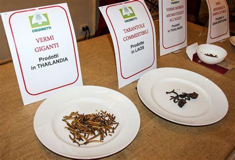 tavola degli alimenti insetti a tavola il 54 degli italiani dice no