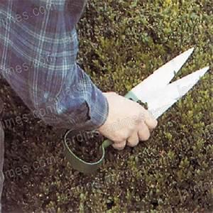 Ciseaux De Jardin : acheter ciseaux a buis pour un jardin bio avec eco sapiens ~ Edinachiropracticcenter.com Idées de Décoration