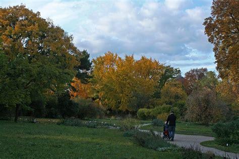 Botanischer Garten Wien Fotos by Im Botanischen Garten In Wien Foto Bild Natur Herbst