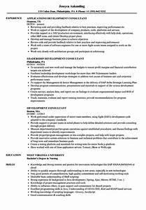 development consultant resume samples velvet jobs With netsuite consultant resume