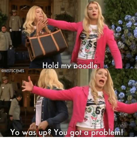 Hold My Meme 25 Best Memes About Hold My Poodle Hold My Poodle Memes
