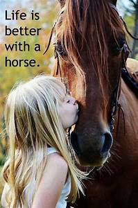 12 Reasons Why ... Horse Owning Quotes